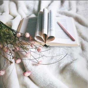 Instagrambild Anna Carlé
